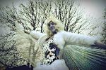 Ice Queen for a Winter Wonderland Wedding