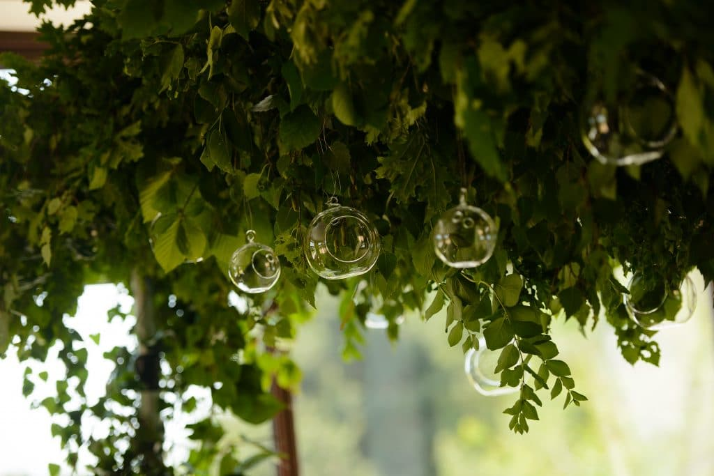 Overhead canopy of green foliage with clear baubles into which you can out Tea-lights.